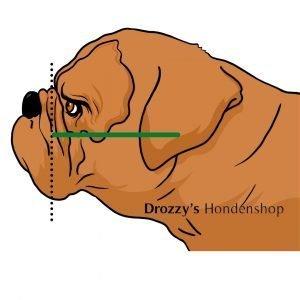 Wanglengte bulldog