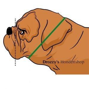 Nekomtrek bulldog